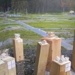 Japanischer Pavillon, Giardini, Foto: Lena Witte