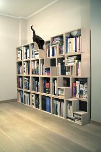 Corentin Dombrecht, Cat Library; Foto: Corentin Dombrecht