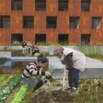 BDA Hamburg Studienpreis 2015_3 Preis_Maral Iranpour