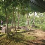 """Gleisdreieck Park Berlin, interkultureller Garten """"Rosenduft"""""""
