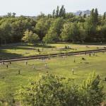 """Constanze A. Petrow und Leonard Grosch: """"Parks entwerfen. Berlins Park am Gleisdreieck oder die Kunst, lebendige Orte zu schaffen"""", Buchumschlag innen"""