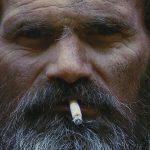 Paddy Hay, Cuckoo Roller, Australien 2019, Copyright: Paddy Hay