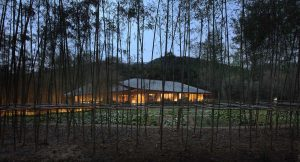 Daoming Bamboo Craft Village von Archi-UnionArchitecture Design, Foto: Bian Lin