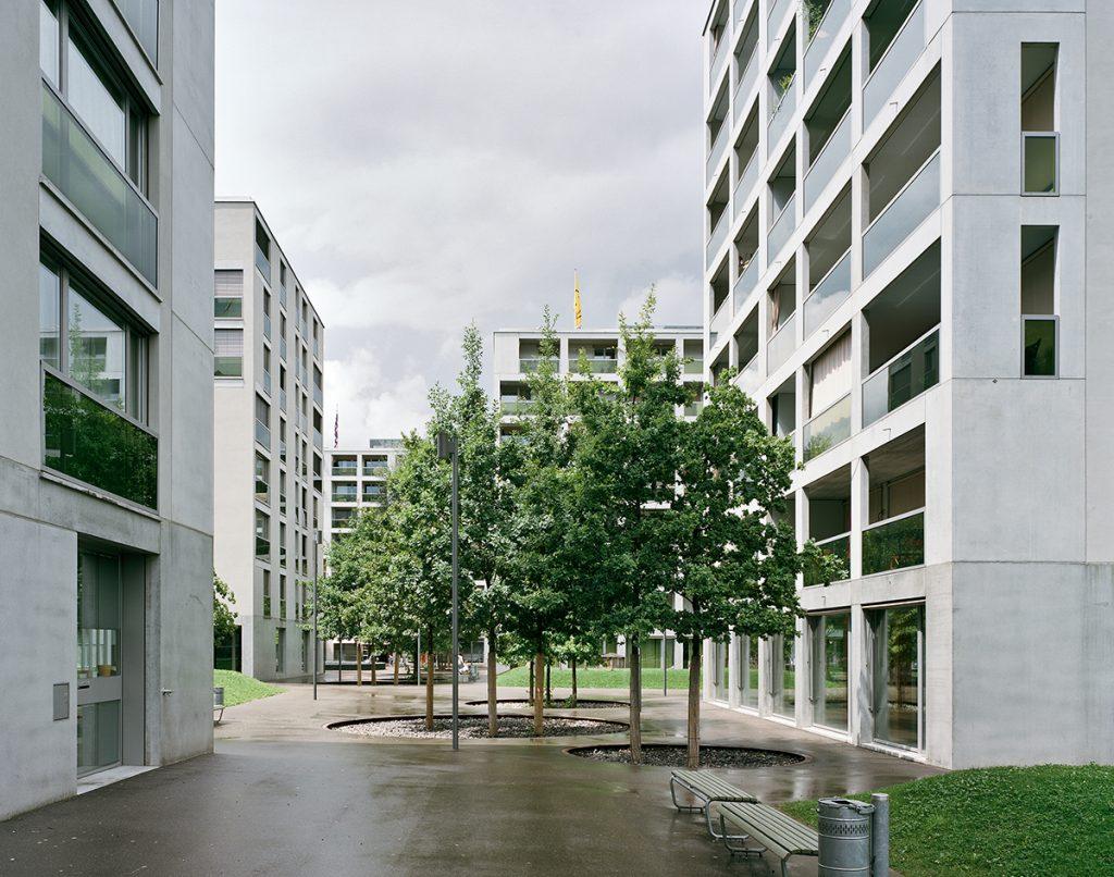 Adrian Streich, Siedlung Werdwies, Zürich 2007, Foto: Georg Aerni