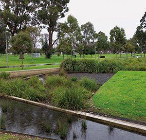 Edingburgh Gardens, Melbourne, integriertes Wetland, Foto: Simon Gehrmann