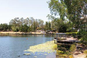Der See in Springfield Lakes ist gleichzeitig auch Ortsmitte, Foto: Simon Gehrmann