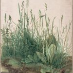 Albrecht Dürer, The Large Piece of Turf (Das große Rasenstück), 1503, Watercolor and body color heightened with white body color, 40.8 cm x 31.5 cm, Albertina, Public Domain